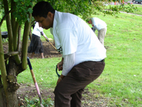 Annesley taking part in the 2008 Birmingham Conservative Social Action project at the Welsh House Farm Estate