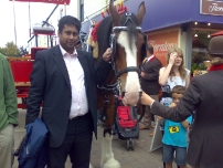 Annesley with the Robinson\'s Brewery horse at the Marple food festival